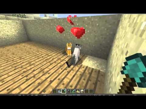 Minecraft: addomesticare i leopardi/gheopardi (Ocelot)