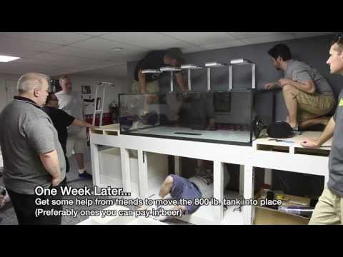 Checkin' out Paul's 240-gallon Custom Reef Tank Build Part I