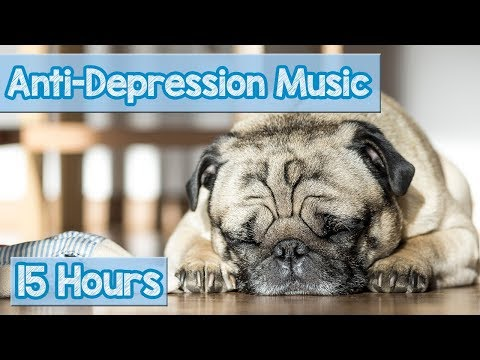 NEW Soothing Music for Depressed Dogs and Puppies! Music to Calm Dog Separation Anxiety & Depression