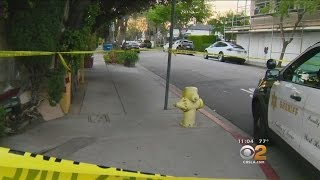 Failed Romance Leads To Murder-Suicide In West Hollywood