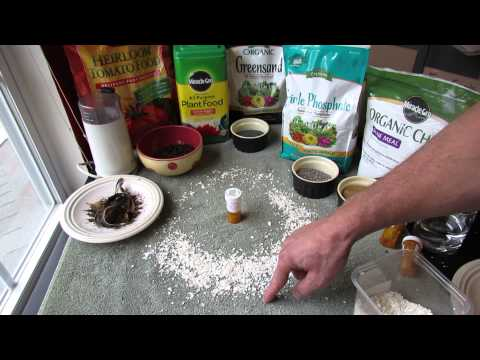 How to Effectively Use Crushed Eggshells Against Garden Snails and Slugs - TRG 2014
