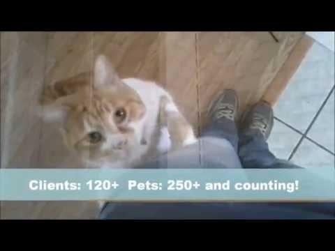 Stow pet sitter & dog walker: The Paw Sitter LLC