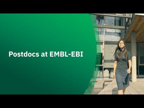 Postdocs at EMBL-EBI