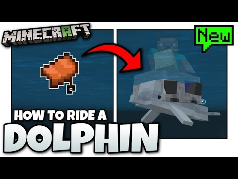 Minecraft - How to ride a DOLPHIN [ Tutorial ] BETA -MCPE / Xbox / Bedrock