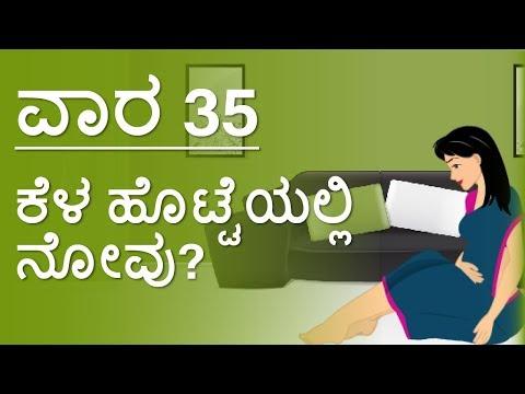 The Pregnancy   Kannada   Week by Week   Week 35