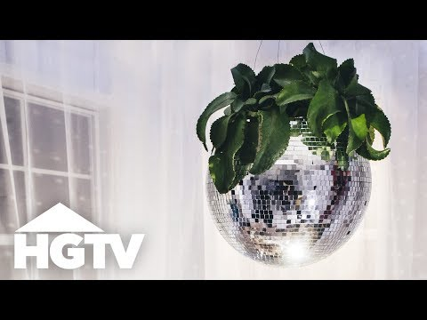Turn a Disco Ball Into a Groovy Planter - Way to Grow - HGTV