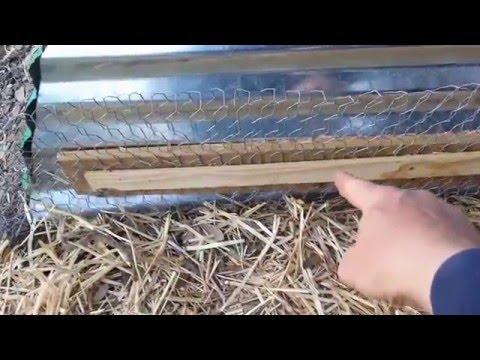Predator proof the coop
