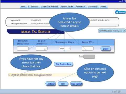 HOW TO FILE ONLINE PROFESSIONAL TAX RETURN