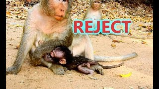 REJECT MILK...POOR MILTAN SHAKING CRY ANGRY MUM MILTA. Mum stop love and less care Miltan
