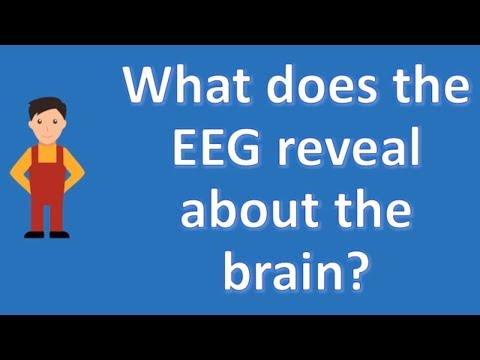 What does the EEG reveal about the brain ? | Health Channel