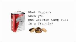 Coleman fuel in a Trangia - Part 1