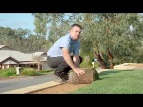 Paul Munns  - How to install instant lawn