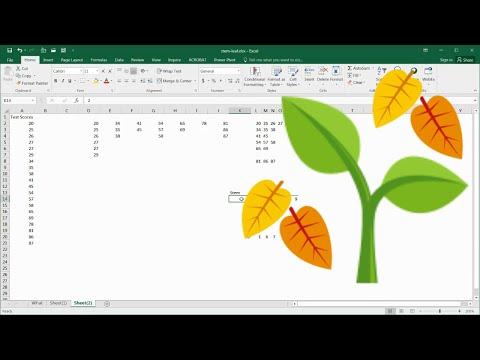 Create a Basic Stem and Leaf Display