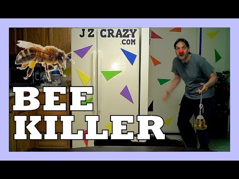 Bee Killer - How to get rid of Bees