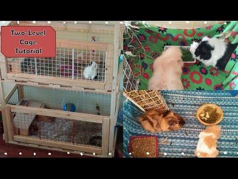 Two Level Wooden Guinea Pig/ Rabbit Cage Tutorial | DIY Homemade