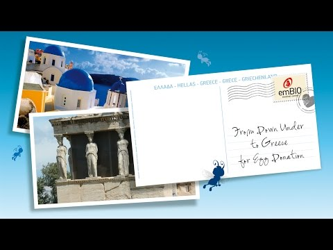 An Australian to Greece for Egg Donation