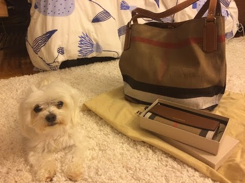 Burberry Bag and Wallet Haul / Reveal