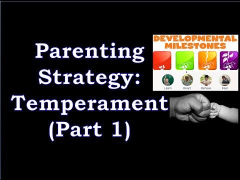 Parenting Strategies: Understanding Temperament (part 1 of 2)