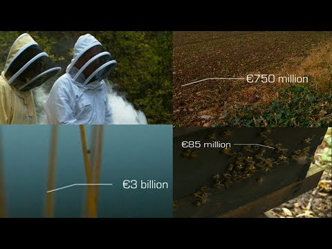 Eco Eye 13 - Ep 2: 'The Price of Nature'