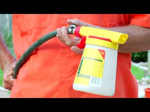 Lawn & Gardening Tips : How to Get Rid of Fleas in Your Yard Naturally