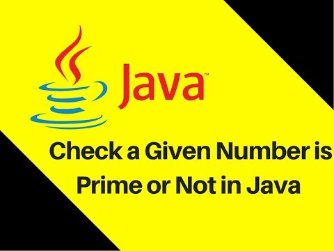 5.17 How to check a given number is prime or not in Java Tutorial | Lecture