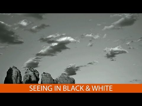 Seeing in Black and White with Eileen Rafferty