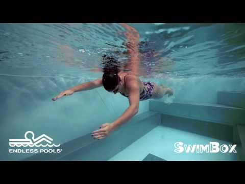 Catch-Up Drill with Endless Pools & SwimBox Swim School