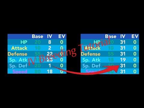 Pokémon Brick Bronze IV Explanation/Tutorial