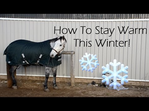 How to Stay Warm This Winter with Your Horse!