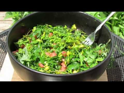 The Harvest & Preparation: Olive Oil & Red Wine Vinegar Kale Flower, Bud & Leaf Garden Salad