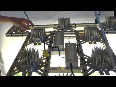 DIY MAU5-X Grow Kit