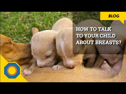 How to talk to your child about breasts? | Parenting Tips | NutSpace