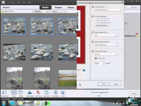 Learn how to use Photoshop Elements 11 - Part 21 -  How to make a contact sheet in Photoshop