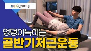 허리통증 도수치료 , 골반기저근운동(feat.대전엠허브의원.라파본TV)