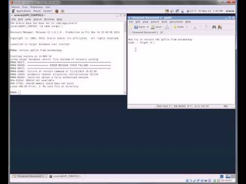 Test an Oracle Database full recovery on a new server using Oracle RMAN