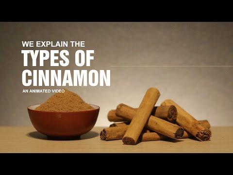 Types of Cinnamon