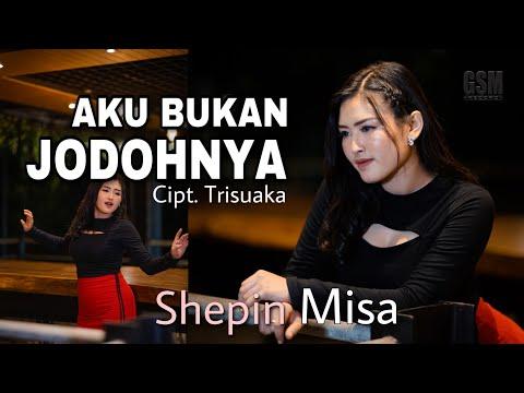 Download Lagu Shepin Misa Aku Bukan Jodohnya Mp3