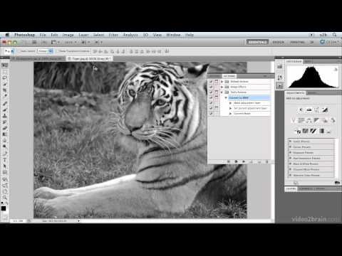 Photoshop CS5: Automating Photoshop with Actions