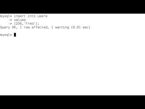 MySQL Integer Data Types