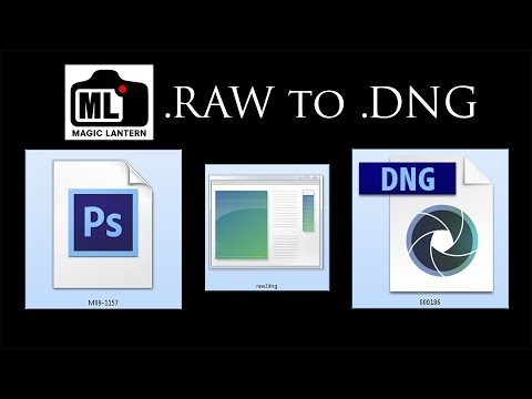 The easy way to convert .RAW movie data to .DNG