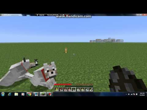 Minecraft Pets Wolf and Ocelot Pets