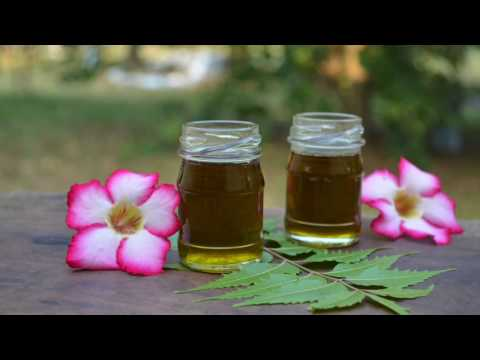 DIY Neem Hair Oil For Hair Growth & Thickness   Cure Dandruff, Lice, Hair Fall & Itchy Scalp