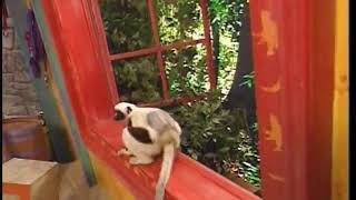 Zoboomafoo: Don't Fence Me In (HQ) Part 2/2