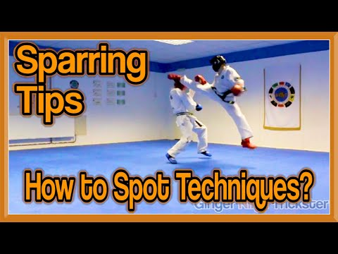 Sparring Tips | How to Spot Techniques?