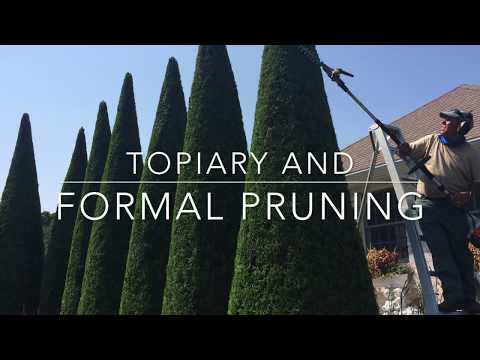 Topiary and Formal Pruning