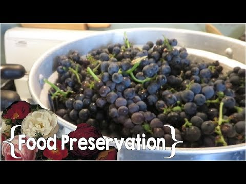 How to Use a Steam Juicer ║ Large Family Cooking and Food Preservation