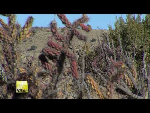 Fred Eichler Hunt Highlights with Nikon