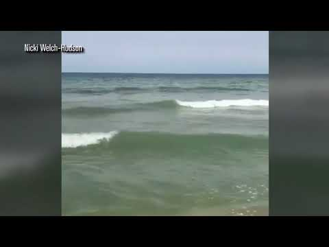 CLOSE CALL: Myrtle Beach swimmers asked to clear water after shark spotted