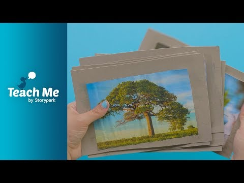 Nature Eye Spy Cards