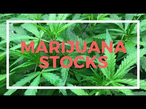 Horizons Marijuana ETF a buy?